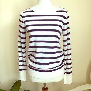 Banana Republic Striped Merino Wool Sweater